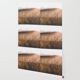 Summer Fields - Rustic Adventure Nature Photography Wallpaper