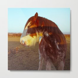The Shire Horse Metal Print
