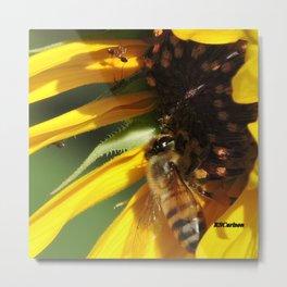 Desert Sunflower Cafeteria Metal Print