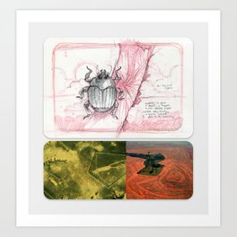 New Naturalism II: Birch bark beetle/ Blythe geoglyphs/ Amazonian deforestation Art Print