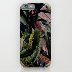 Twisted  Cactus Slim Case iPhone 6s
