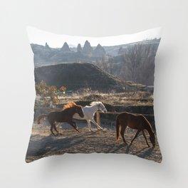 Land of horses Throw Pillow