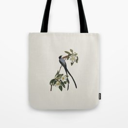 Fork-tailed Flycatcher Bird Illustration Tote Bag