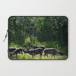 Caribou Reindeer Laptop Sleeve