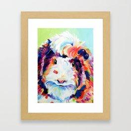 Abyssinian Guinea Pig in Color Framed Art Print