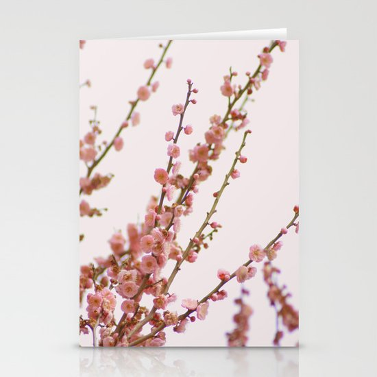 pink skies and apricots Stationery Cards