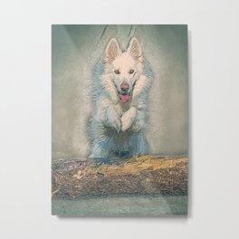 wolf portrait Metal Print