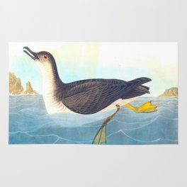 Manks Shearwater Bird Rug