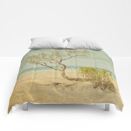 Seclusion Comforters