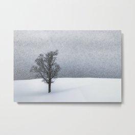 LONELY TREE Idyllic Winterlandscape Metal Print