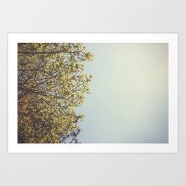 Leaves ∆ Art Print