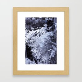 Through Different Eyes Flora Series 3 Framed Art Print