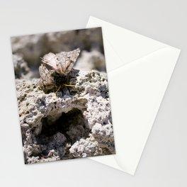 moth on tufa Stationery Cards