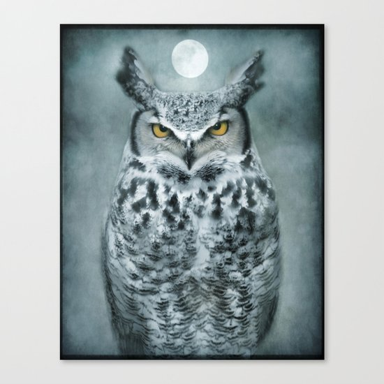 By the light of the Moon... Canvas Print