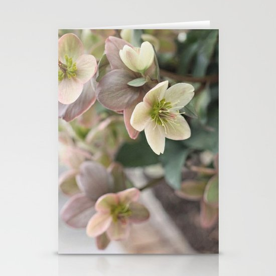 Neutrals Stationery Cards