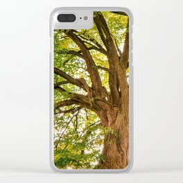Magnificent Forest Clear iPhone Case