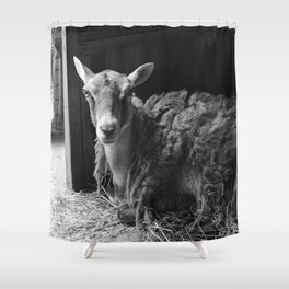 We Are Expecting Visitors Soon Shower Curtain