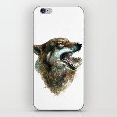 Wolf smile iPhone & iPod Skin