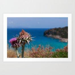 CretanThistle And Sea Art Print