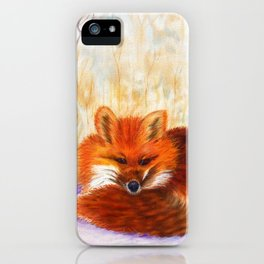 Red fox small nap | Renard roux petite sieste iPhone Case