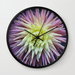 Pink and White Dahlias Wall Clock