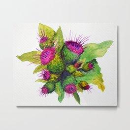 Watercolour Thistles Metal Print