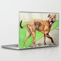 pitbull Laptop & iPad Skins featuring pitbull by Shannon Gordy