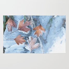 Leaves in the ice Rug