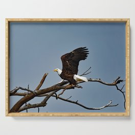 Bald Eagle Lift Off Serving Tray