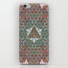 Our Origins. iPhone & iPod Skin