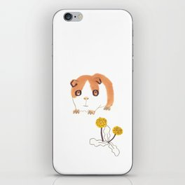 Guinea Pigs iPhone Skin