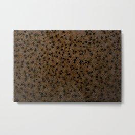 Rust Holes Metal Print