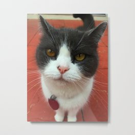 Lighter Missy Metal Print