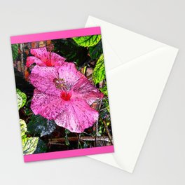 Happy Hibiscus Stationery Cards