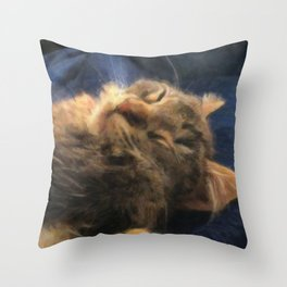 Sleeping Lion Kitty Throw Pillow