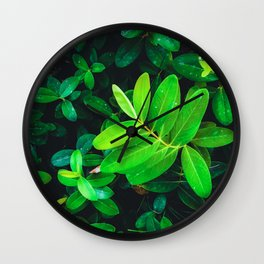closeup fresh green leaves texture background Wall Clock