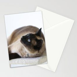 Beautiful Dreamer Stationery Cards