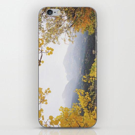 Fall Frame iPhone & iPod Skin