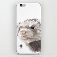 ferret iPhone & iPod Skins featuring Ferret by Adam Dunt