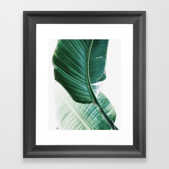 Banana leaves Leaf Plant Modern Wall Art Tropical Framed Art Print : wall art leaves - www.pureclipart.com