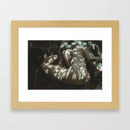 _DSC3907 Framed Art Print