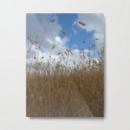 Grain Metal Print