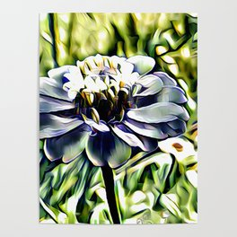 Zinnia In Abstract Poster