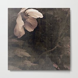 butterfly anemone Metal Print