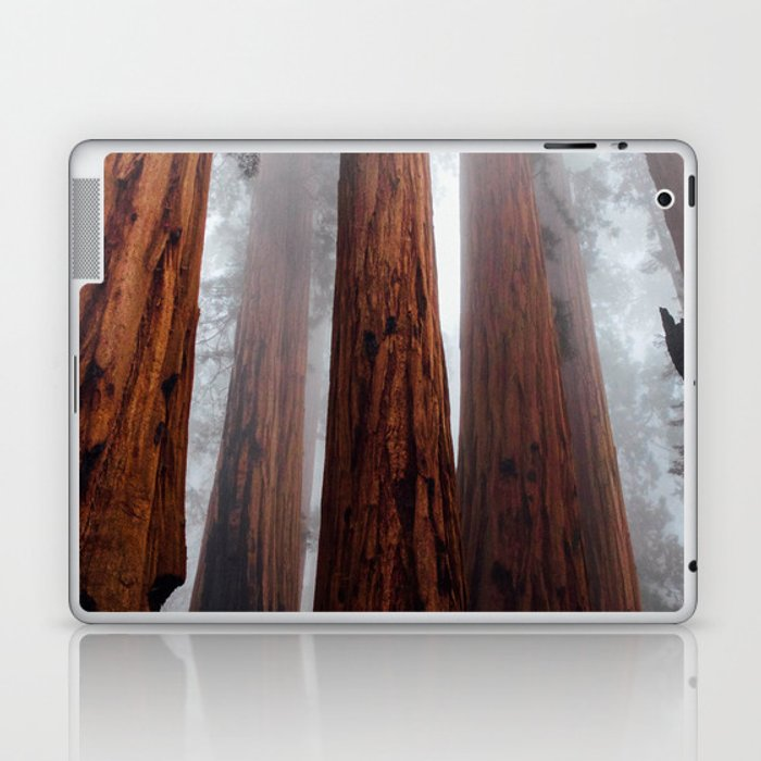 Woodley Forest Laptop & iPad Skin