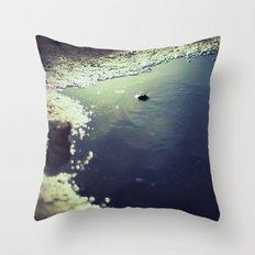 slick Throw Pillow