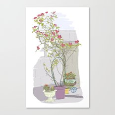 Little potted garden Canvas Print