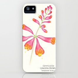 Botanical Sketches 1: Trumpet Honeysuckle iPhone Case