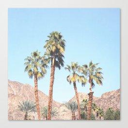 Palm Tree Desert Canvas Print