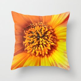 A March 1st Colorburst Throw Pillow